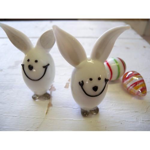Petit lapin blanc.